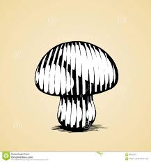 ink sketch of a mushroom with white fill stock vector image