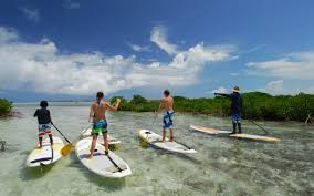 stand up paddle boarding turks and caicos group and rentals