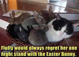 Cute Easter Meme - bunny love
