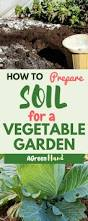 how to prepare soil for a vegetable garden a green hand