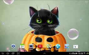 halloween black cat wallpaper cute halloween live wallpaper android apps on google play