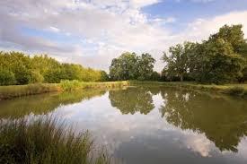 chambre d hotes caussade chambre d hôtes la caussade ladevèze rivière comparer les offres