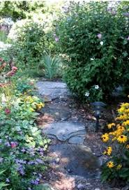 english country garden design top 10 cottage garden plants flowers