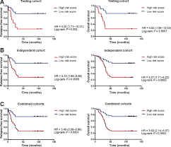 a serum microrna signature predicts tumor relapse and survival in
