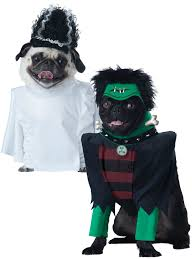 pet halloween costumes uk 39 adorable cat and dog halloween costumes ebay