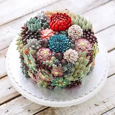incredible artisanal cakes are decorated like mini terrariums