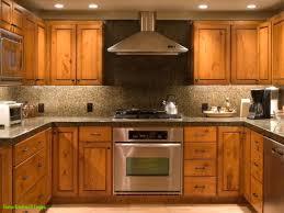 100 elegant kitchen cabinets satisfactory image of