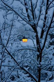 Winter Lane Light Flurries by 17 Best Images About Wonderful Winter Scenery On Pinterest Trees