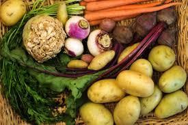A Root Vegetable - root vegetables co op stronger together