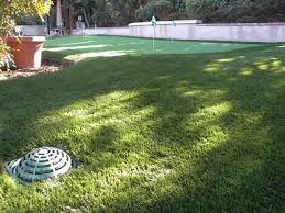 Artificial Grass Las Vegas Synthetic Turf Pavers Residential Artificial Grass Over 5 000 Installs Since 2005
