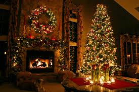 best christmas trees how to find the best christmas tree for your home clickhowto