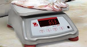Ohaus Bench Scale Bench Scales Extensive Selection For Many Applications