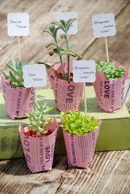 115 best growing gift favors images on pinterest succulent