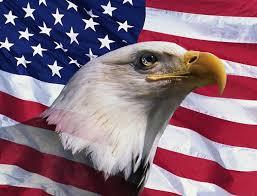America Eagle Meme - men american eagle memes best jokes funny photos images cheers