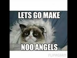Grumpy Cat Meme Clean - deluxe grumpy cat meme clean full funny cats top 50 grumpy cat