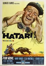 elsa martinelli hatari hatari 1962 the movie