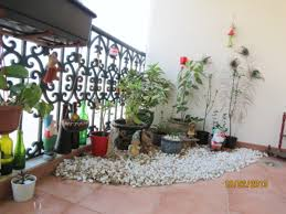 awesome garden design in india kitchen garden on terrace a new