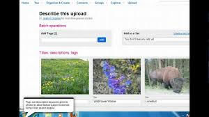 flickr organize photos on flickr imaging and multimedia youtube