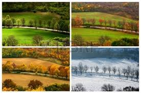 climate change from winter to summer time over the year nature