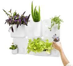 amazon com urbio big happy family wall planters patio lawn u0026 garden