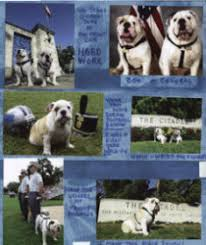 Dog Scrapbook Album Pet Mascot Scrapbook Layouts