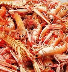 cuisiner les langoustines cuisson langoustine les fruits de mer