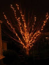 outdoor small lighted tree for outdoors tomato cage