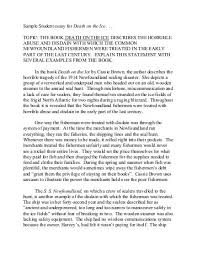 Blizzard Resume Examples Of Good Scholarship Essays Scholarship Essay Examples