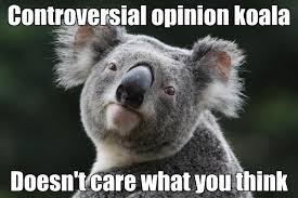 Koala Meme - and now introducing the controversial opinion koala memes