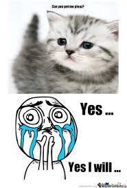 Cuteness Overload Meme - rmx cuteness overload by vandarius meme center