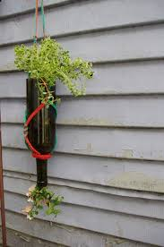 inverted wine bottle planter 7 steps with pictures