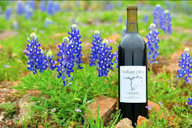 the absolute best wineries in fredericksburg texas to get your sip on