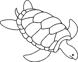 tortoise turtle going sea coloring page wecoloringpage