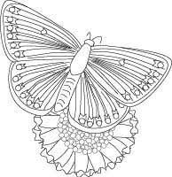 coloring pages older kids perfect coloring pages older