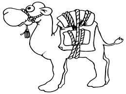 coloring pages animals camel coloring page printable camel