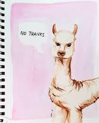 Schfifty Five Know Your Meme - fuzzy llama tumblr