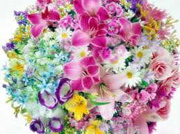 Flower Screen Backgrounds - flower backgrounds for desktop full hdq flower pictures and