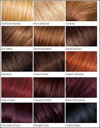 nice n easy hair color chart best 25 loreal hair color chart ideas on pinterest loreal hair
