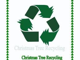 recycle those trees