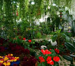 Inside Garden by Dubai Butterfly Garden Very Hungry Explorer