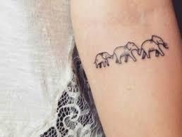 28 best tatuagens u003c3 images on pinterest tattoos of roses birds