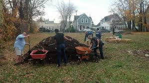 cultivating self sufficiency the hollows community garden and