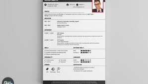 resume sles for experienced software professionals pdf converter resume template unforgettablene free mac pdf or word passport