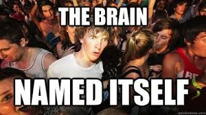 Sudden Realization Meme - the best of the sudden clarity clarence meme