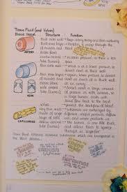 205 best s t u d y images on pinterest stuff study notes
