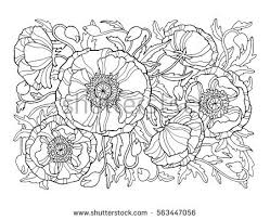 free coloring pages for adults download free vector art stock