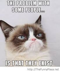 Grumpy Face Meme - the cat s permanent grumpy face is caused by according t thinglink