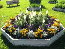 Flower Garden Ideas Pictures Sun Garden Ideas Medium Size Of Home Garden Ideas Sun