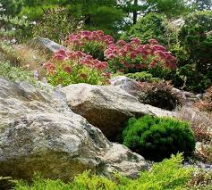 rock garden houzz