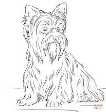 coloriages chiens coloriages gratuits à imprimer